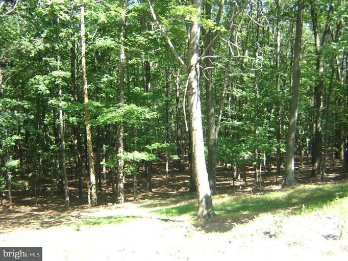 Additional photo for property listing at 494 Cayuga Trail  Hedgesville, West Virginia 25427 United States