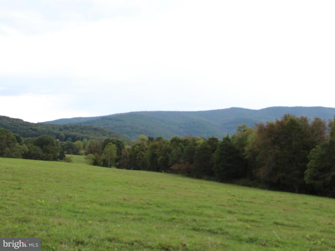Terreno para Venda às Beahm Beahm Rileyville, Virginia 22650 Estados Unidos