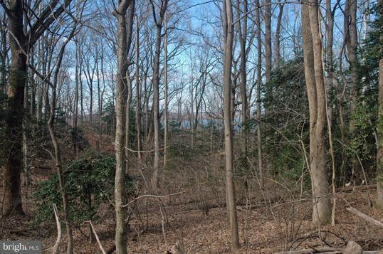 Additional photo for property listing at West Ridge Rd  Accokeek, Maryland 20607 United States