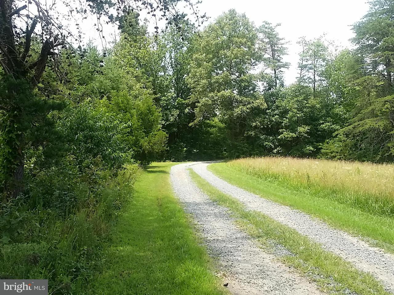 Additional photo for property listing at 3673 BYRD MILL Road 3673 BYRD MILL Road Louisa, 버지니아 23093 미국