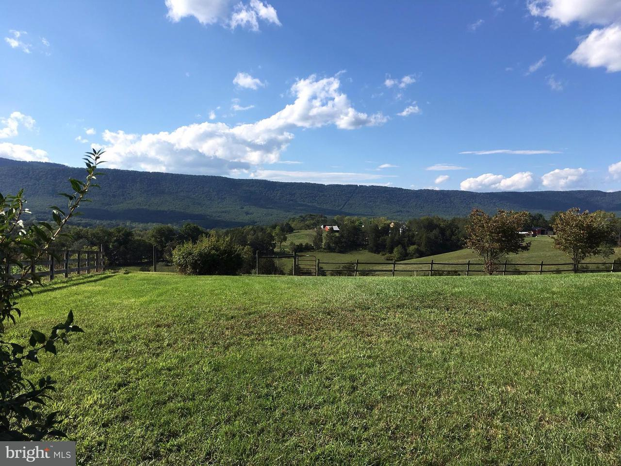 Additional photo for property listing at 1985 BIXLERS FERRY Road 1985 BIXLERS FERRY Road Luray, Virginia 22835 Verenigde Staten