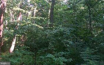 Land for Sale at 46 Riley Ct Front Royal, Virginia 22630 United States