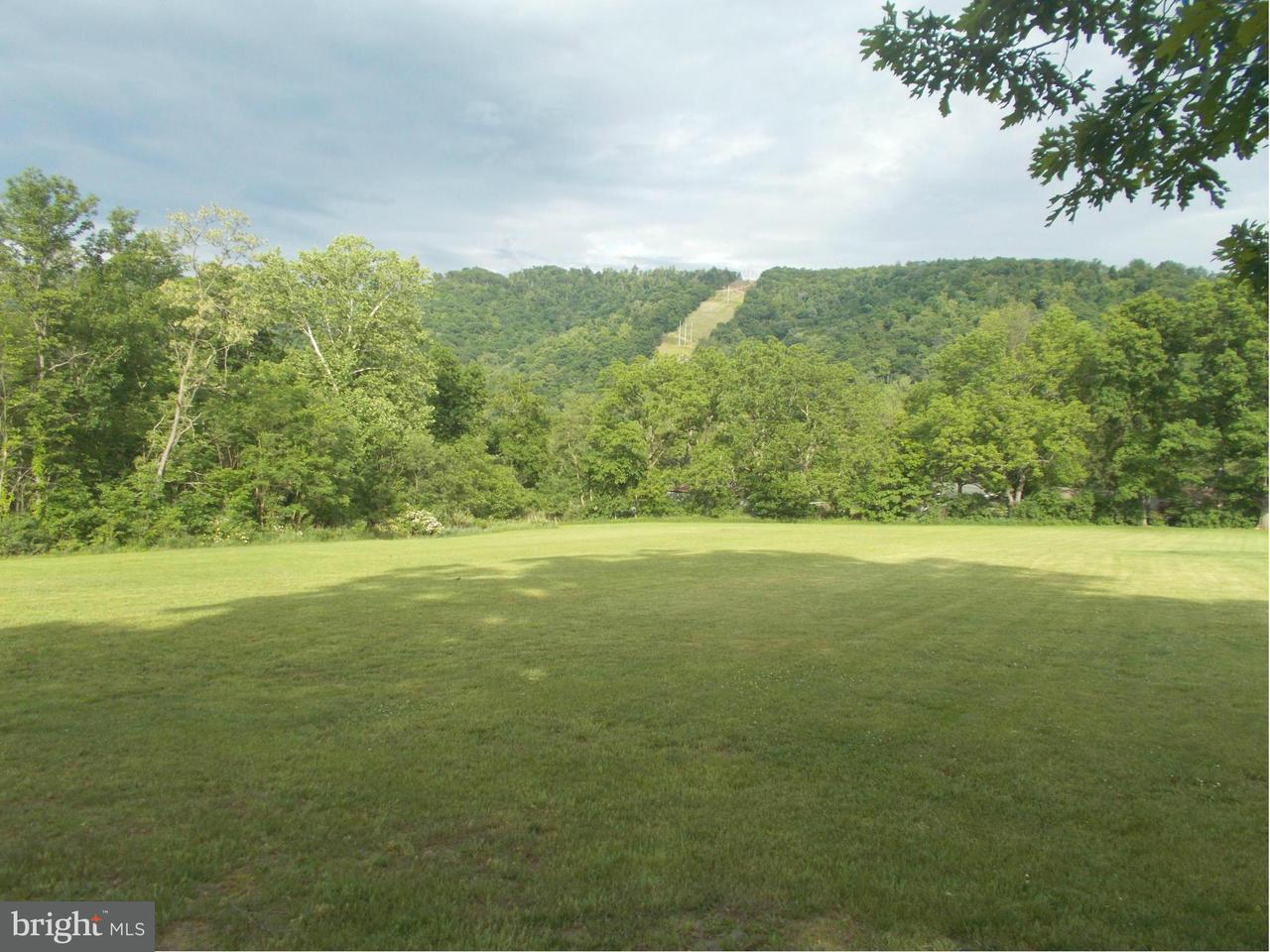 Land for Sale at Tangle Wood Loop New Creek, West Virginia 26743 United States