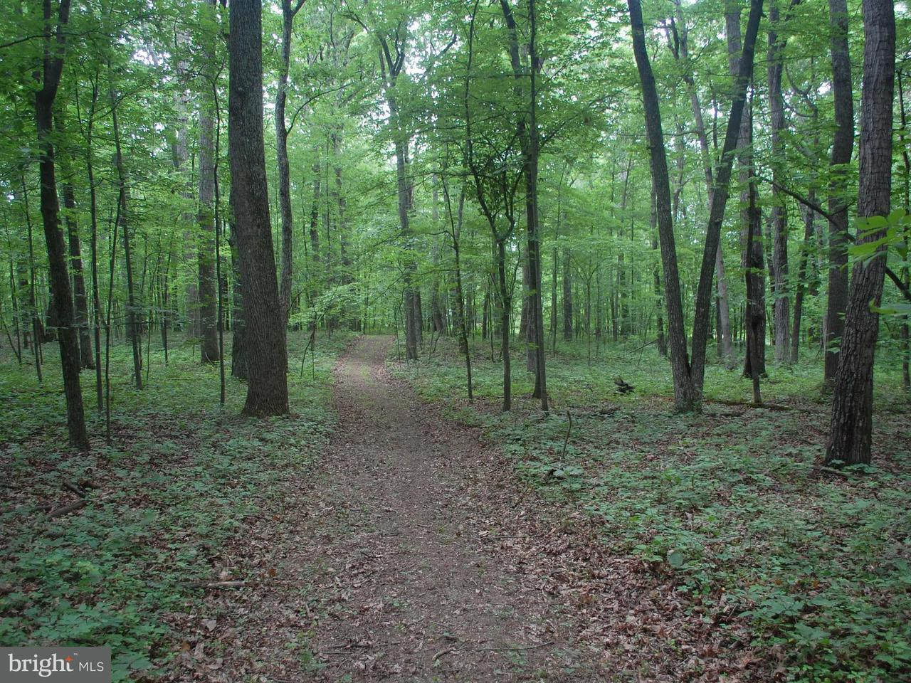 Land for Sale at ZULLA Road ZULLA Road The Plains, Virginia 20198 United States