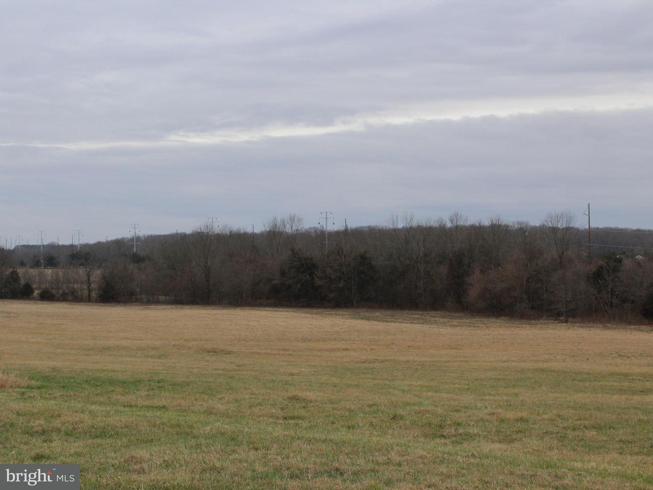 Land for Sale at 6641 SCHOOLHOUSE Road 6641 SCHOOLHOUSE Road Bealeton, Virginia 22712 United States