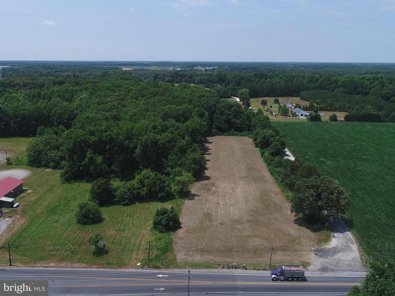 土地 為 出售 在 HARPERS BRANCH Drive HARPERS BRANCH Drive Denton, 馬里蘭州 21629 美國