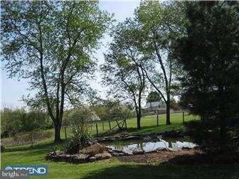 Additional photo for property listing at 3800 YORK Road  Buckingham, Pennsylvanie 18925 États-Unis