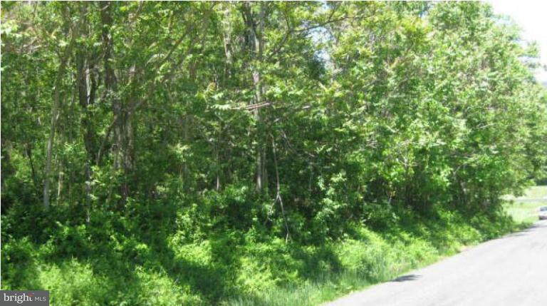 Additional photo for property listing at GREENWOOD STATION Road GREENWOOD STATION Road Greenwood, Virginia 22943 United States