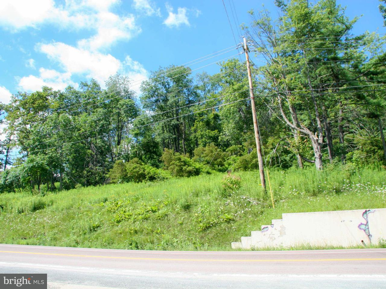 Additional photo for property listing at 21287 GARRETT HWY 21287 GARRETT HWY Mc Henry, Maryland 21541 États-Unis