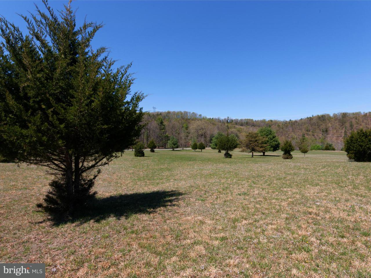 Land for Sale at 816 River Bend Dr Bloomery, West Virginia 26817 United States