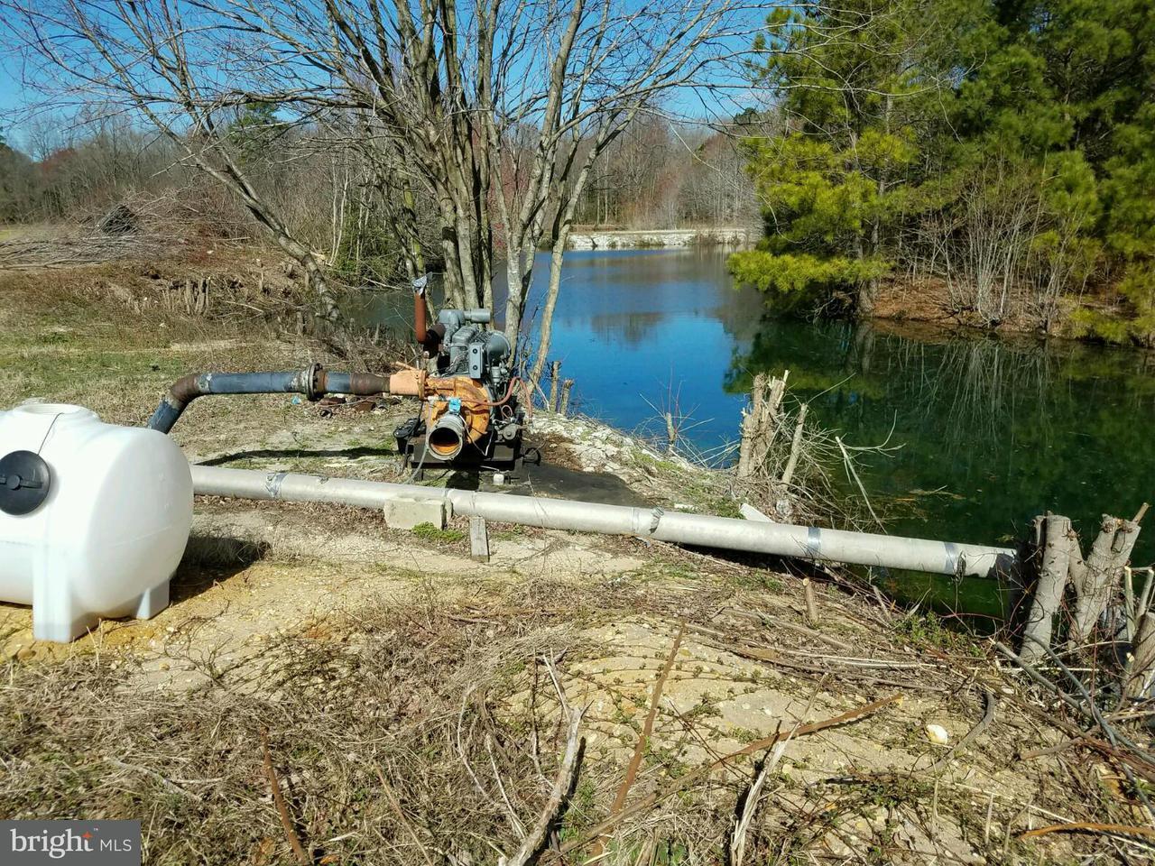 Additional photo for property listing at 5835 NEWTON Road 5835 NEWTON Road Preston, Maryland 21655 Estados Unidos