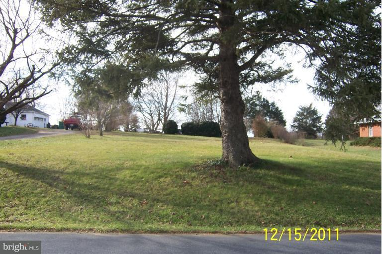 Land for Sale at Fariview Rd Luray, Virginia 22835 United States