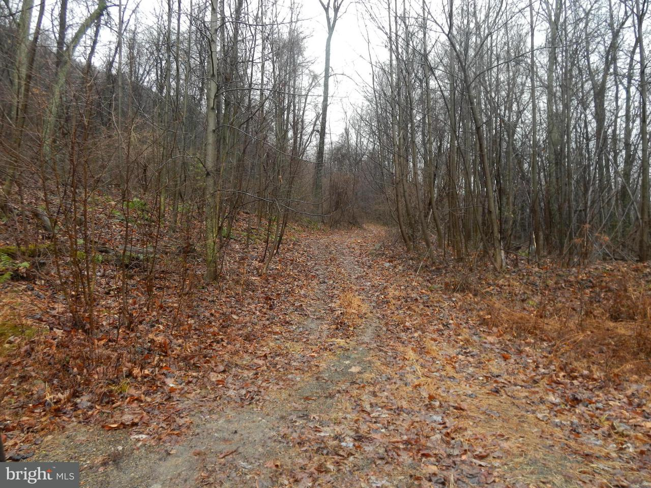 Land for Sale at Timmons Rd Spring Run, Pennsylvania 17262 United States