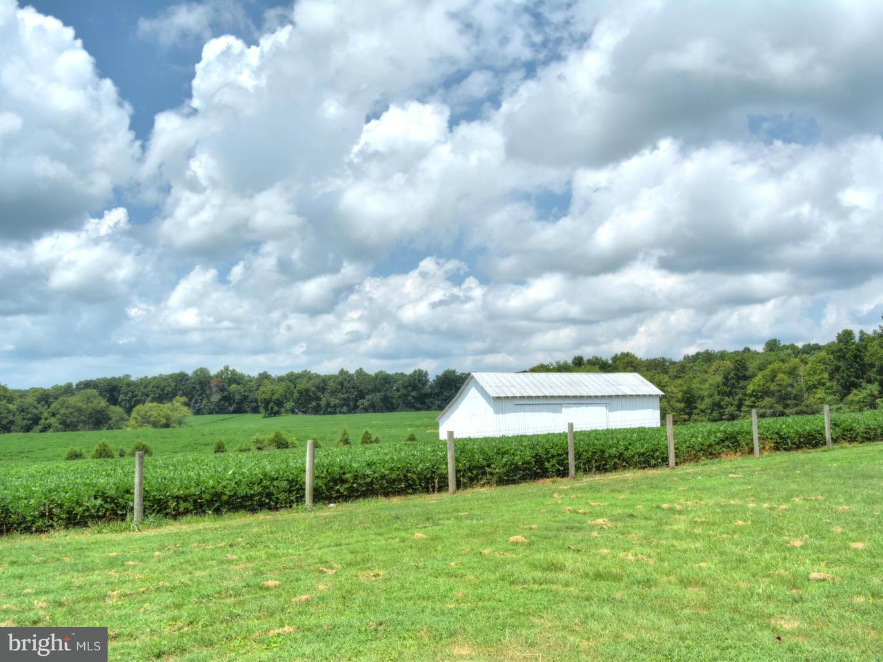 토지 용 매매 에 2285 ANTIOCH Road 2285 ANTIOCH Road Scottsville, 버지니아 24590 미국