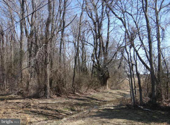 Land for Sale at 0 Bay Dr Stevensville, Maryland 21666 United States