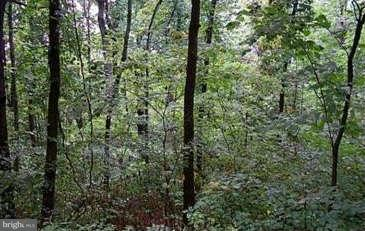 Land for Sale at 74 Riley Ct Front Royal, Virginia 22630 United States