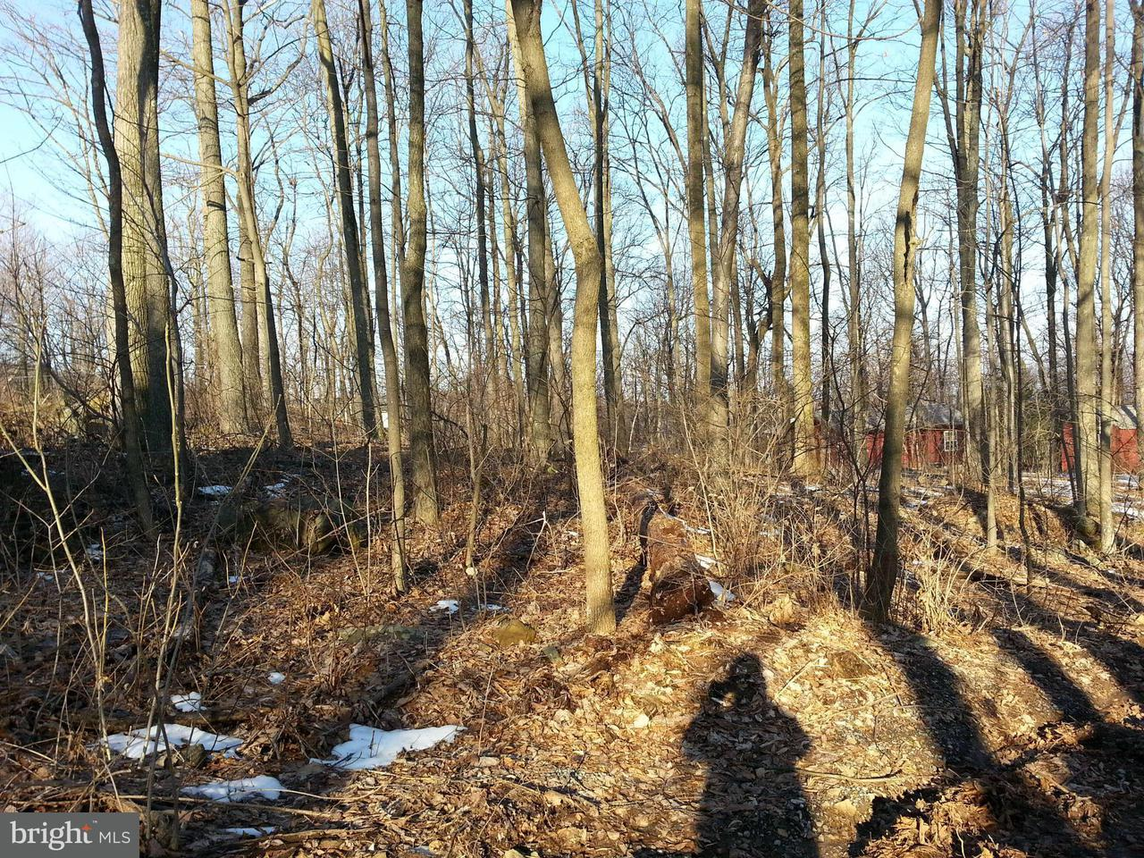 Land for Sale at Hunters Ave Chester Gap, Virginia 22623 United States