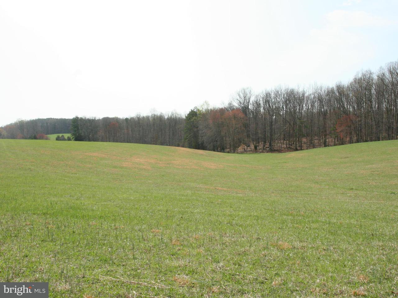 Additional photo for property listing at VAWTER CORNER Road VAWTER CORNER Road Louisa, 버지니아 23093 미국