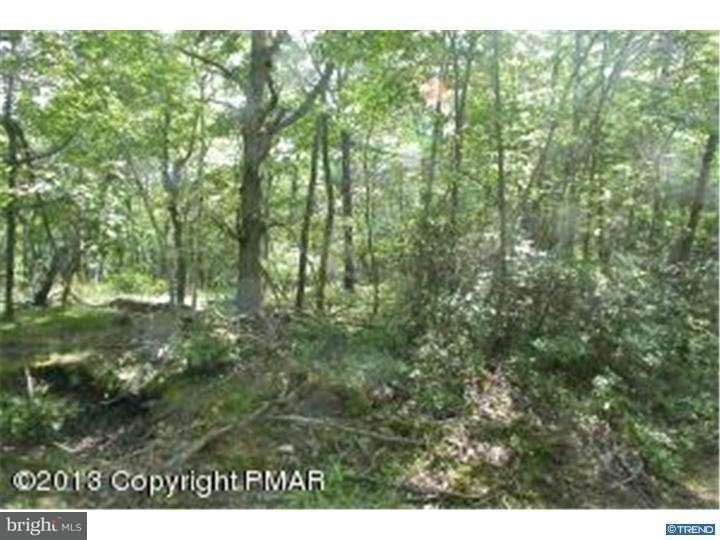 Additional photo for property listing at HUNT Avenue  Mount Pocono, Пенсильвания 18344 Соединенные Штаты