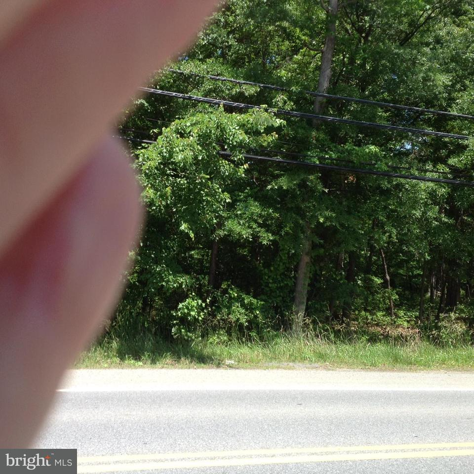 Additional photo for property listing at 13500 BRANDYWINE Road 13500 BRANDYWINE Road Brandywine, Мэриленд 20613 Соединенные Штаты