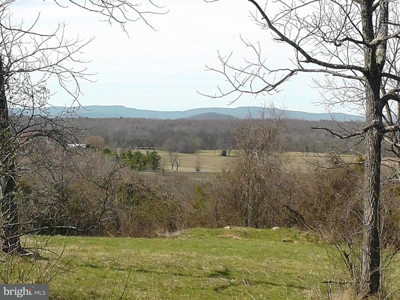 Land for Sale at A Old Barn Road Rixeyville, Virginia 22737 United States