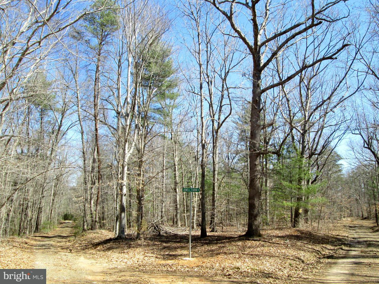 Land for Sale at Watson Rd Burr Hill, Virginia 22433 United States