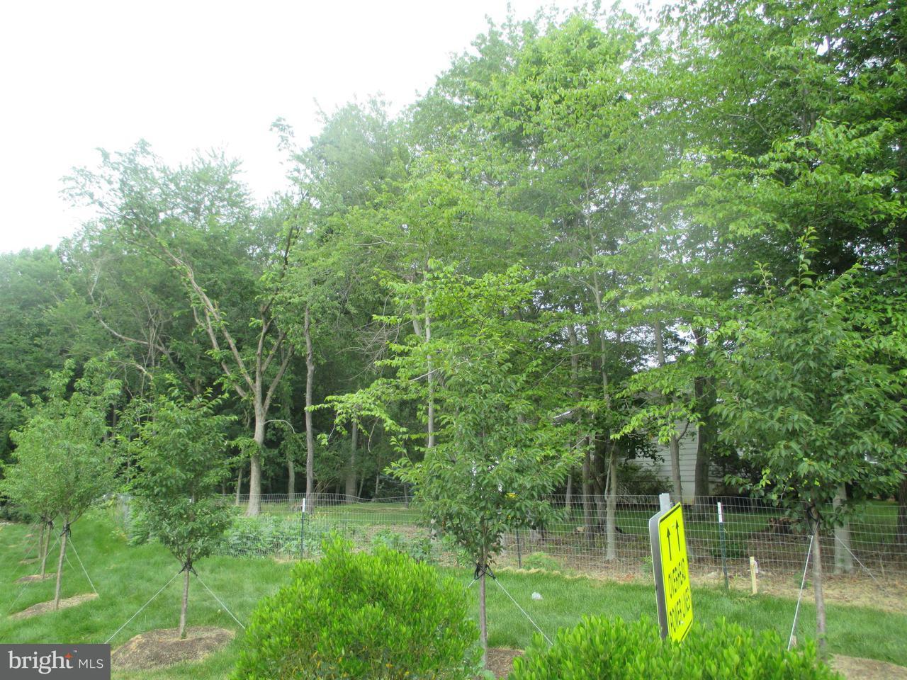 Terreno per Vendita alle ore 10125 Zion Drive 10125 Zion Drive Fairfax, Virginia 22032 Stati Uniti