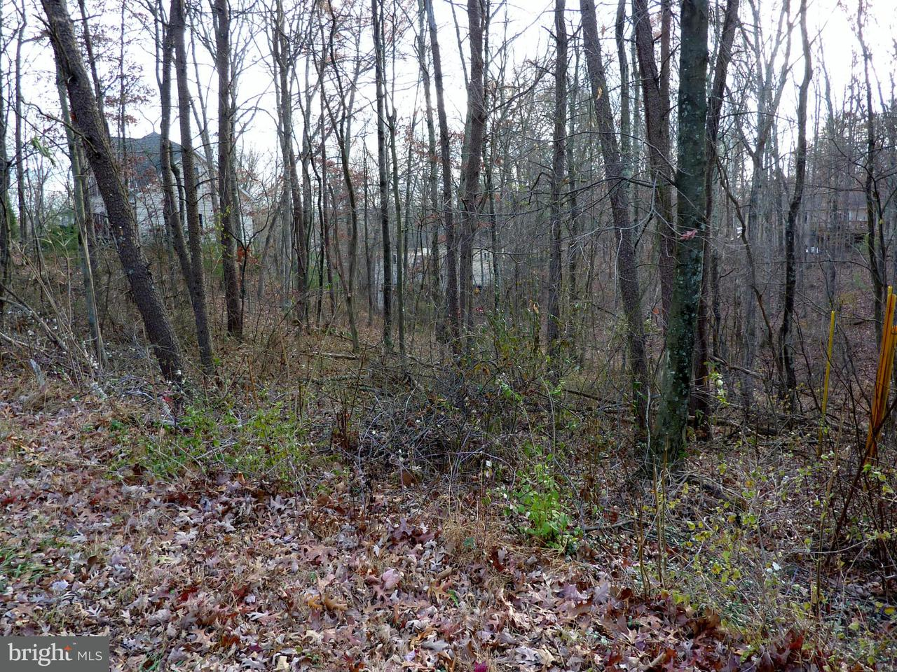 Additional photo for property listing at 1503 Lakeview Dr  Cross Junction, Virginia 22625 United States
