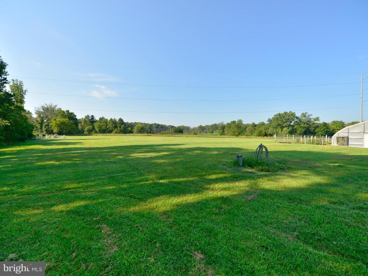 Additional photo for property listing at 39501 MEADOWLARK Drive 39501 MEADOWLARK Drive Hamilton, バージニア 20158 アメリカ合衆国