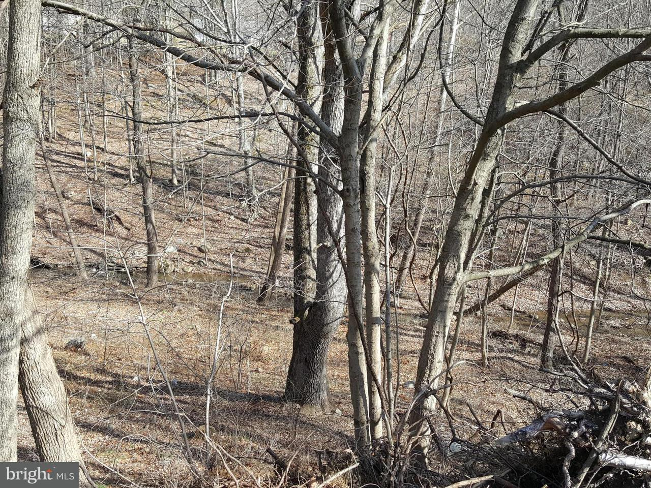 Land for Sale at WINCHESTER RR Road WINCHESTER RR Road Lavale, Maryland 21502 United States