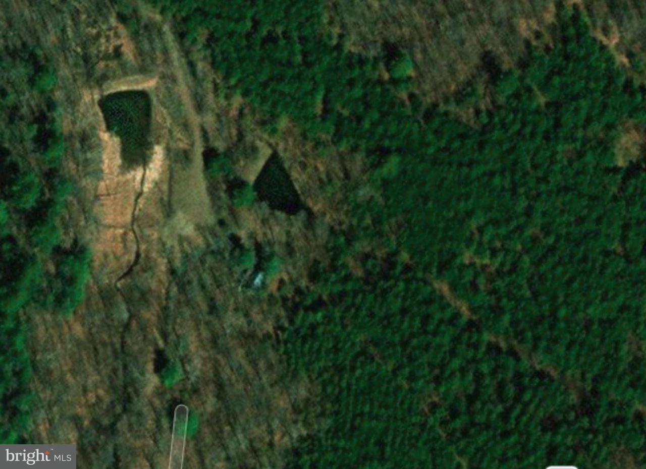 Terrain pour l Vente à 514 MORGAN FREDERICK Lane 514 MORGAN FREDERICK Lane Cross Junction, Virginia 22625 États-Unis