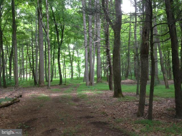 Land for Sale at Amberwood Great Cacapon, West Virginia 25422 United States