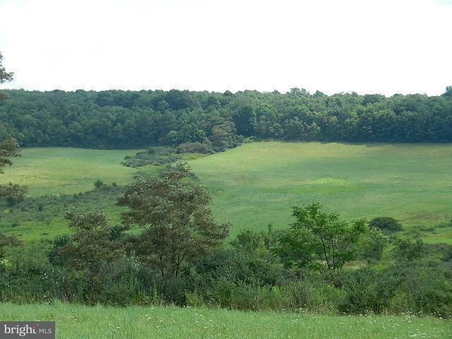 Additional photo for property listing at 87 Parkersburg Rd E  Eckhart Mines, Maryland 21528 United States