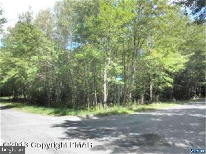 独户住宅 为 出租 在 2804 PATRIOT Lane Pocono Summit, 宾夕法尼亚州 18346 美国