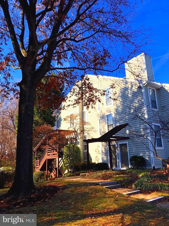 Condominium for Rent at 9987 Oakton Terrace Rd #9987 Oakton, Virginia 22124 United States