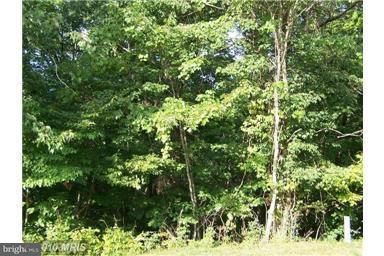 Land for Sale at Vickie Way Basye, Virginia 22810 United States