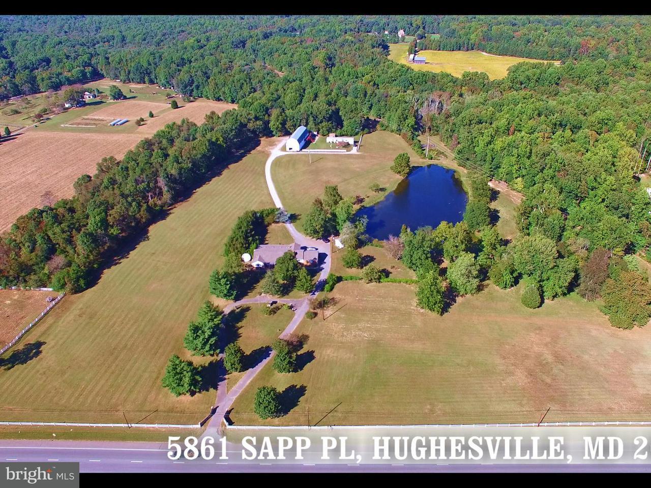 农场 为 销售 在 5861 Sapp Place 5861 Sapp Place Hughesville, 马里兰州 20637 美国