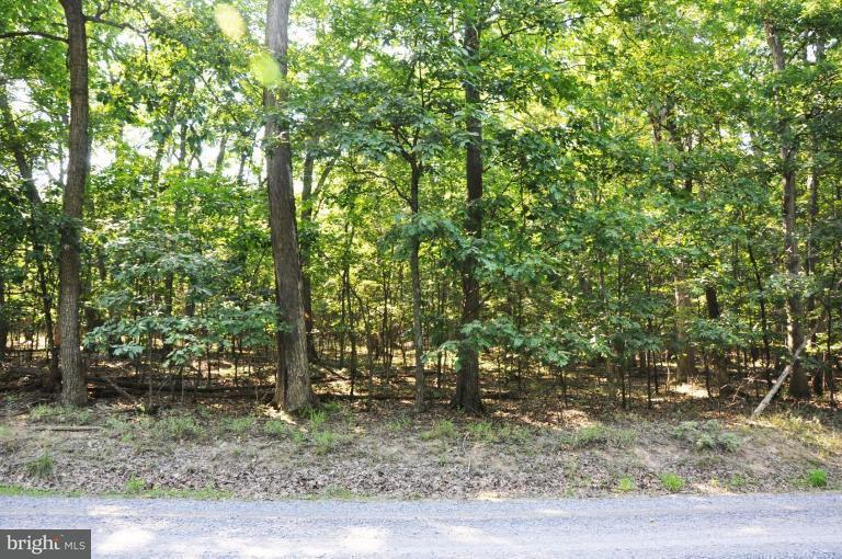Additional photo for property listing at 0 Sawmill Dr  Gore, Virginia 22637 United States