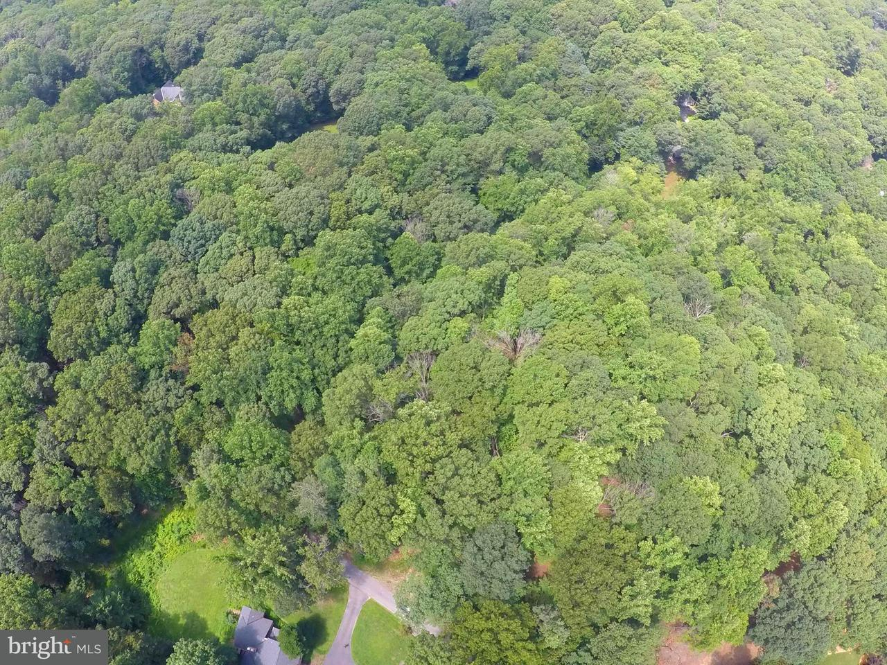 Land for Sale at 615 UTTERBACK STORE Road 615 UTTERBACK STORE Road Great Falls, Virginia 22066 United States
