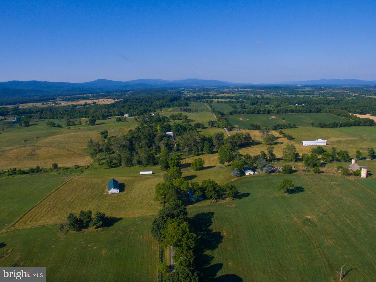 农场 为 销售 在 466 MONTANA HALL LN S 466 MONTANA HALL LN S White Post, 弗吉尼亚州 22663 美国