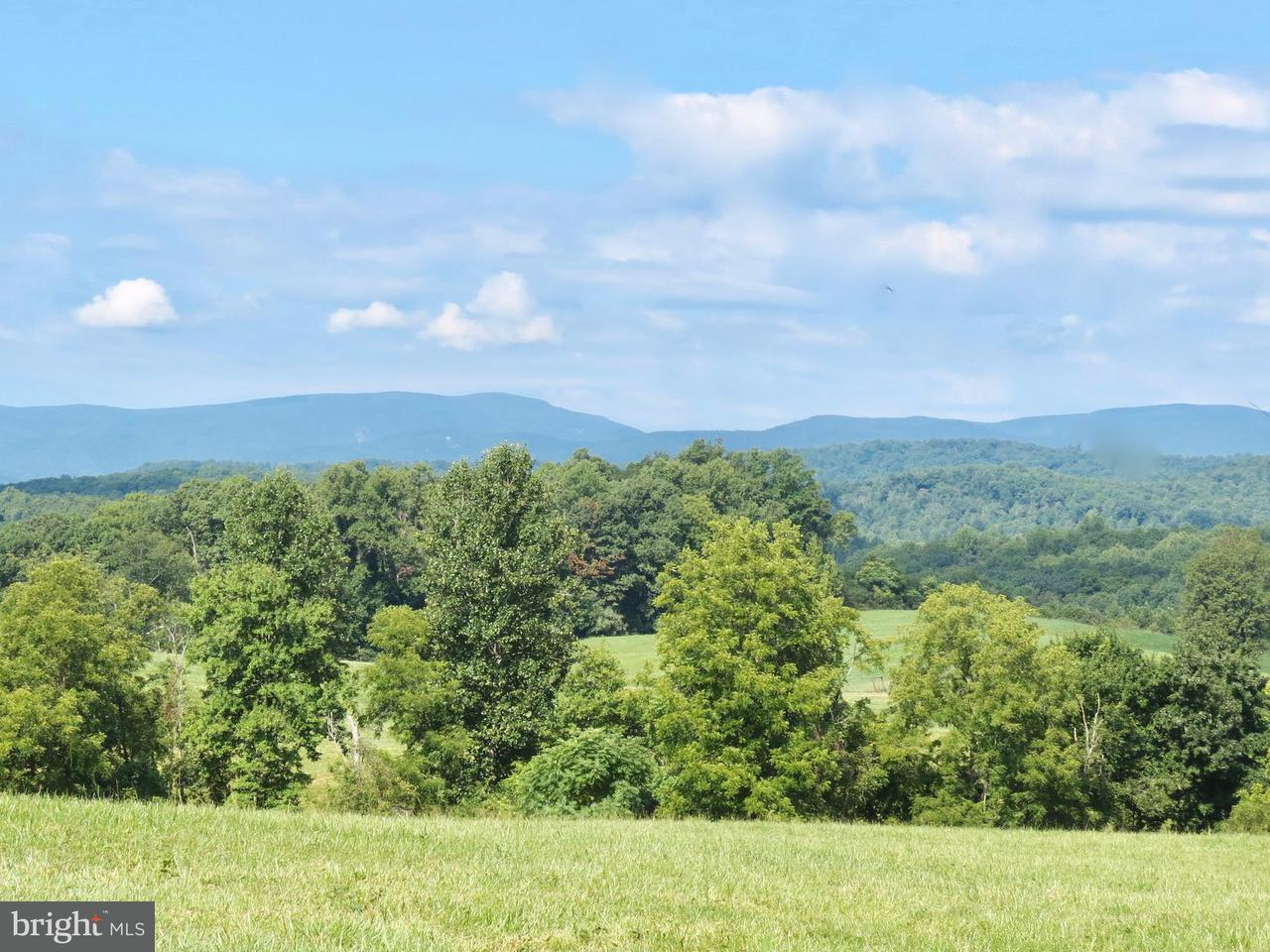 Land for Sale at 8780 OLD STILLHOUSE Road 8780 OLD STILLHOUSE Road Rixeyville, Virginia 22737 United States