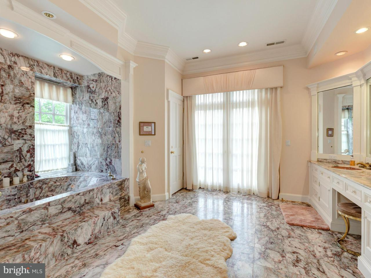 Additional photo for property listing at 11206 Richland Grove Drive 11206 Richland Grove Drive Great Falls, Virginia 22066 United States