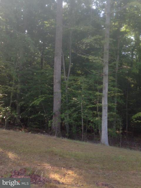 Land for Sale at 4802 Bog Turtle Ct Waldorf, Maryland 20601 United States