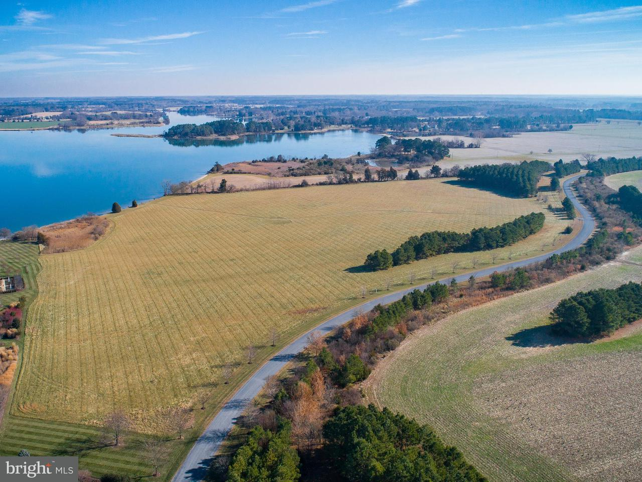 Land for Sale at Morgans Point Dr Oxford, Maryland 21654 United States