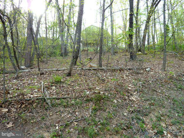 Additional photo for property listing at Lot 69 Willow Ln  Basye, Virginia 22810 United States
