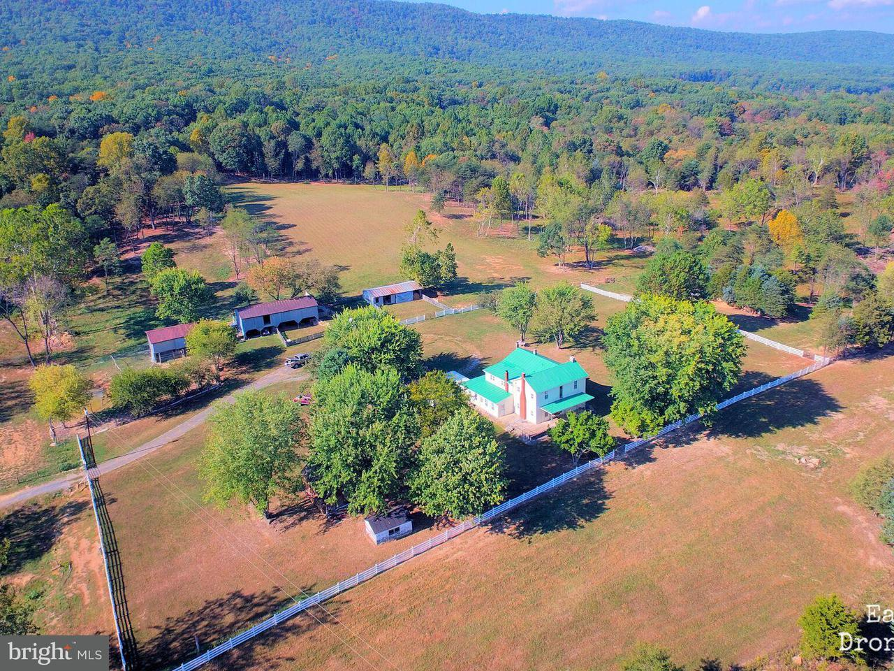 Farm for Sale at 16015 Back Rd Strasburg, Virginia 22657 United States