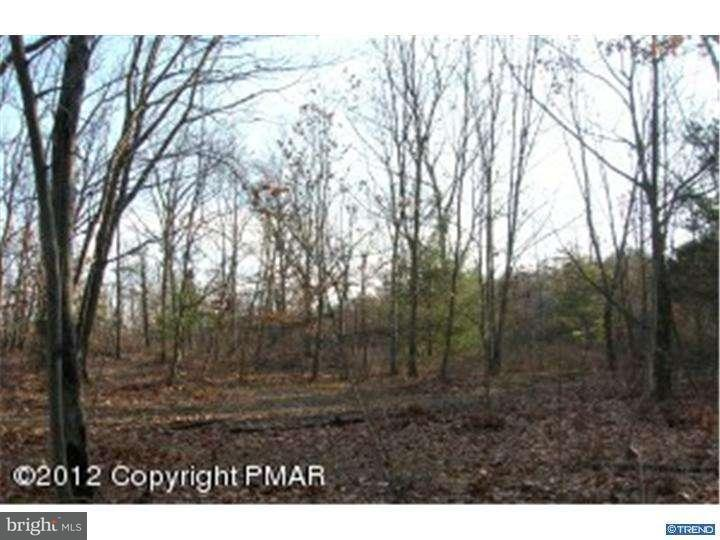 Additional photo for property listing at MT NEBO Road  East Stroudsburg, Пенсильвания 18301 Соединенные Штаты