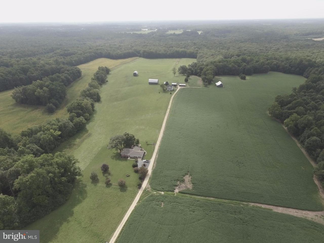 土地 のために 売買 アット 13795 Hemming Place 13795 Hemming Place Waldorf, メリーランド 20601 アメリカ合衆国