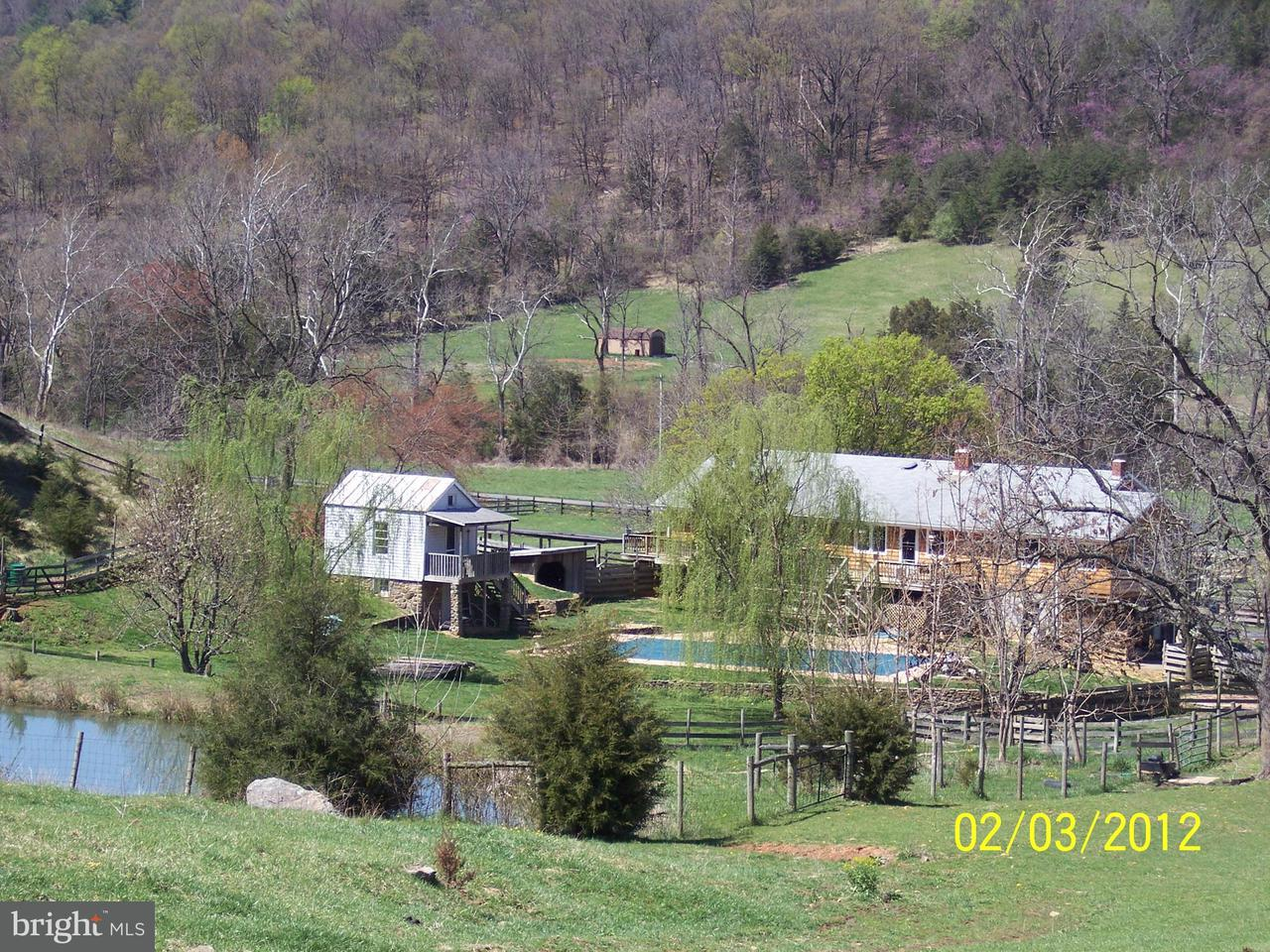 Farm for Sale at 3259 IDA Road 3259 IDA Road Luray, Virginia 22835 United States