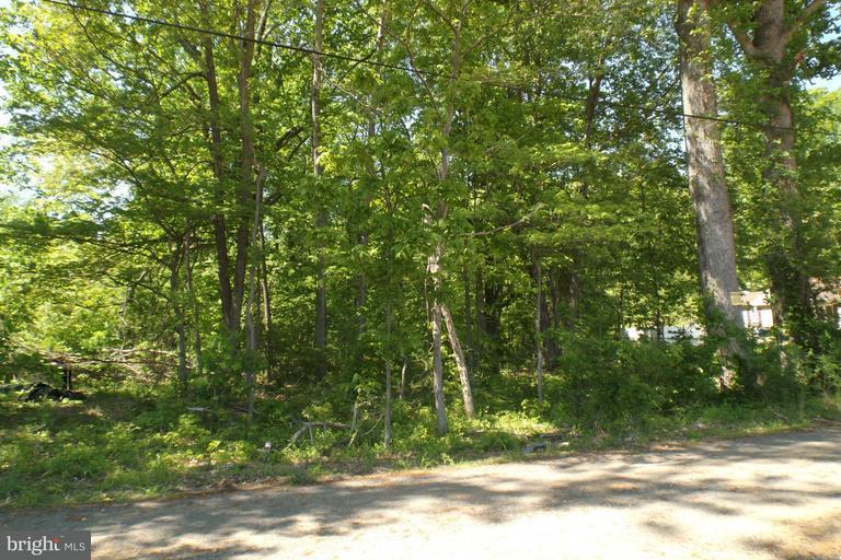 Land for Sale at Matthews Rd Bryans Road, Maryland 20616 United States